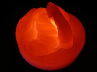 orange wax